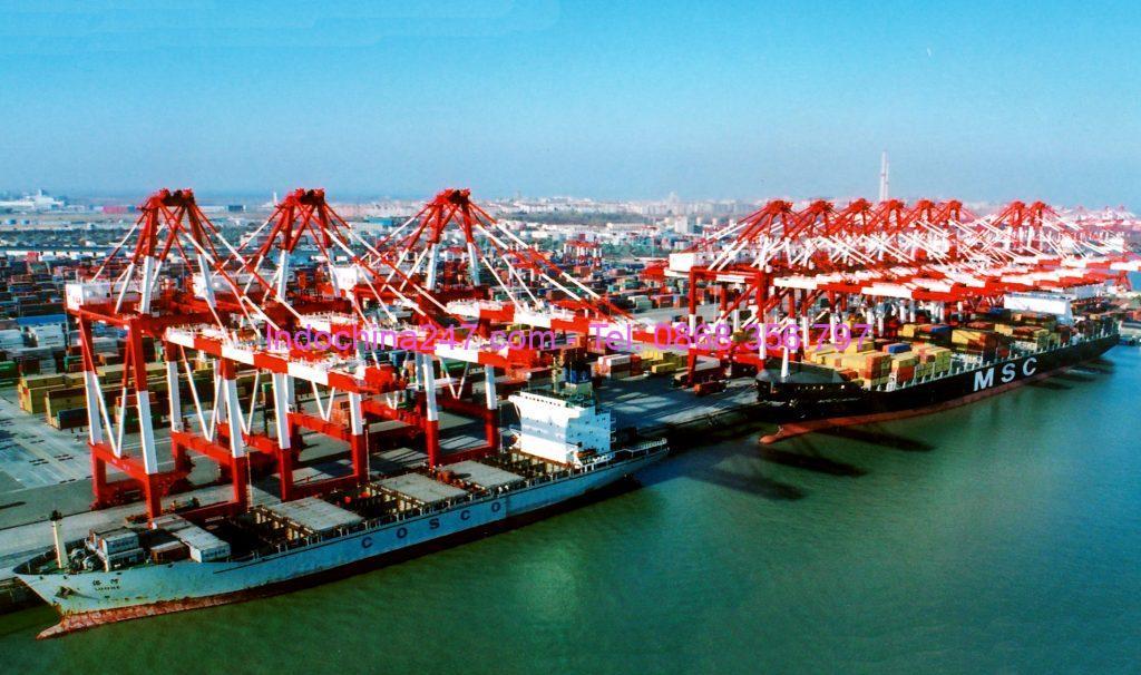 Dịch vụ gom hàng lẻ từ Sài Gòn đi cảng Thanh Đảo, Sơn Đông, Trung Quốc giá rẻ