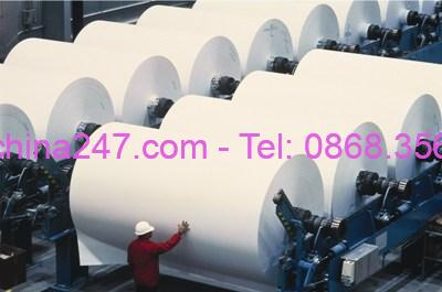 Hướng dẫn nhập khẩu bột giấy Acacia từ Trung Quốc về Việt Nam