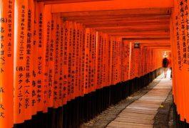 Dich vu chuyen phat nhanh chung tu, buu pham tu Ha Noi di Kyoto