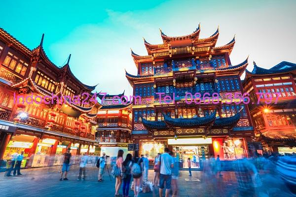 Dịch vụ gom hàng lẻ từ cảng Sài Gòn đi cảng Bắc Hải Trung Quốc giá rẻ