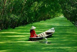 Dịch vụ chuyển phát nhanh từ Sài Gòn đến An Giang an toàn giá rẻ