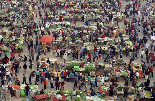 Dịch vụ chuyển hàng từ Trà Vinh sang Campuchia qua cửa khẩu Hoa Lư (Bình Phước) an toàn, tiết kiệm