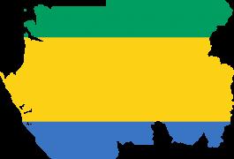 Chuyen phat nhanh hang hoa Viet Nam di Gabon - Indochina247
