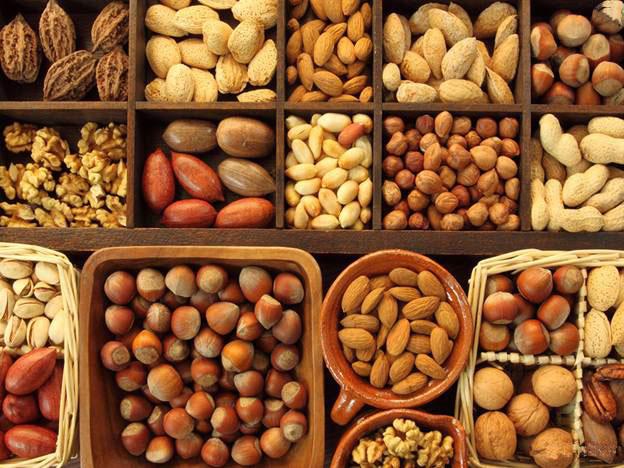 Thủ tục nhập khẩu hạt - cây khô từ Indonesia về chế biến đồ ăn uống nhanh