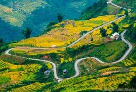 Dịch vụ chuyển phát nhanh từ Sài Gòn đến Lào Cai uy tín giá rẻ