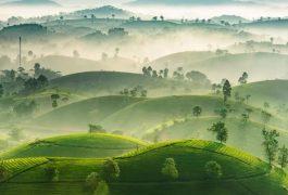 Chuyển phát nhanh từ Hồ Chí Minh đến Phú Thọ chất lượng uy tín giá rẻ