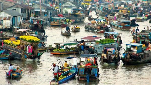 Dịch vụ chuyển phát nhanh từ Quảng Ninh đến Cà Mau chất lượng, giá cạnh tranh