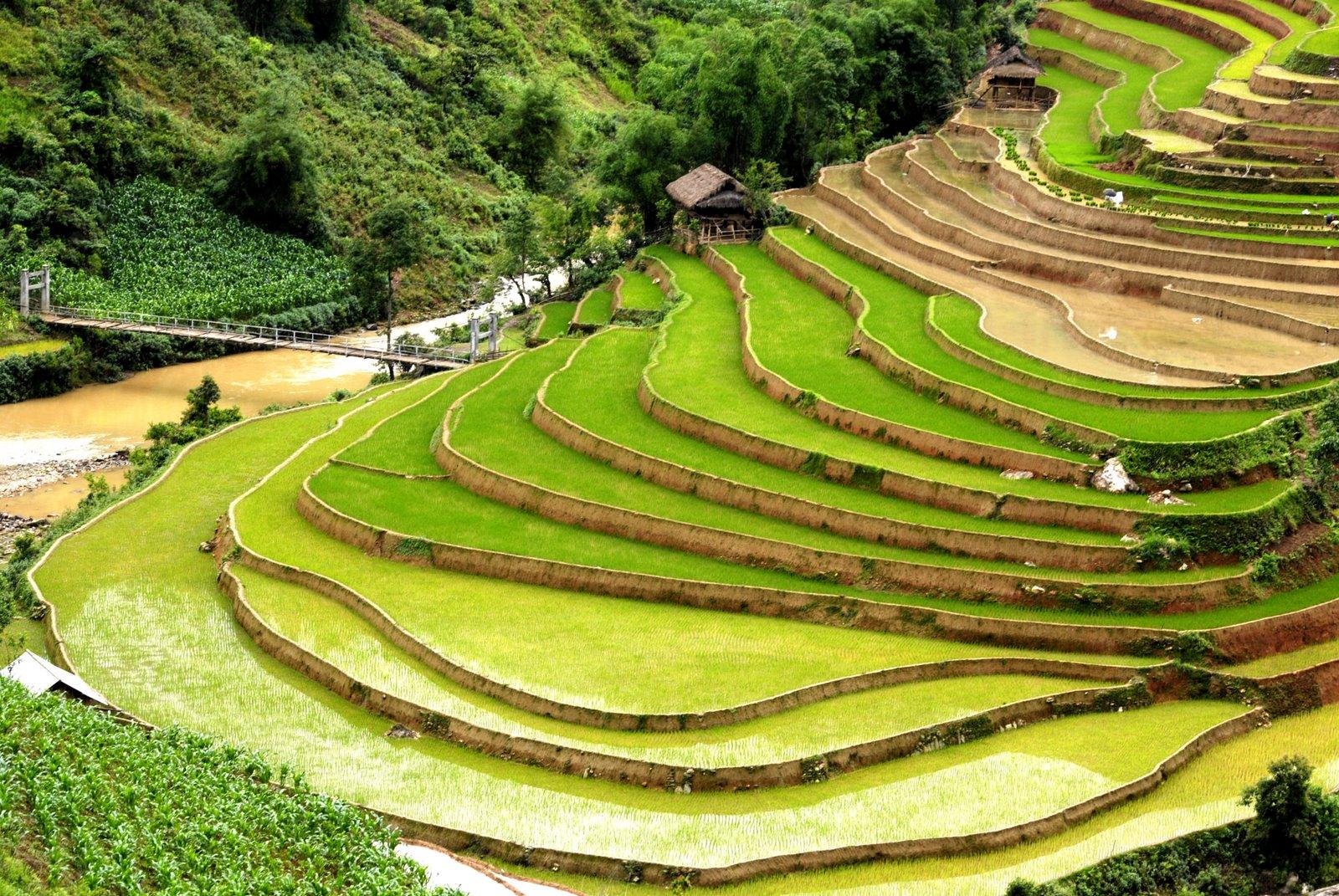 DỊch vụ chuyển phát nhanh từ Quảng Ninh đến Yên Bái giá rẻ, đảm bảo và uy tín
