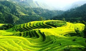 Chuyển phát nhanh từ Quảng Ninh đến Hà Giang uy tín, giá rẻ