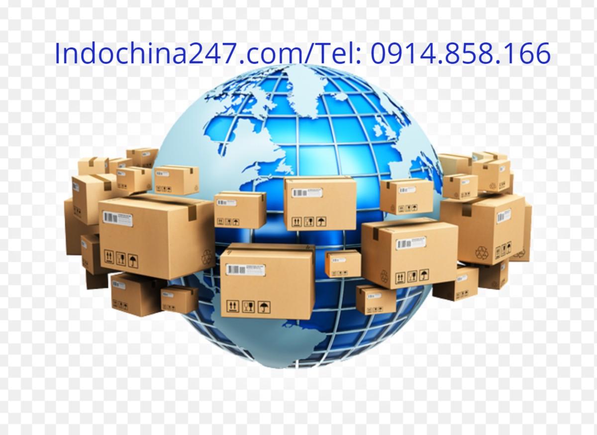 Nhận order vận chuyển phụ kiện nha khoa y tế từ Đức