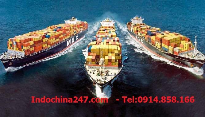 Vận chuyển đường biển giá rẻ từ Hải Phòng đến Tokyo Nhật Bản