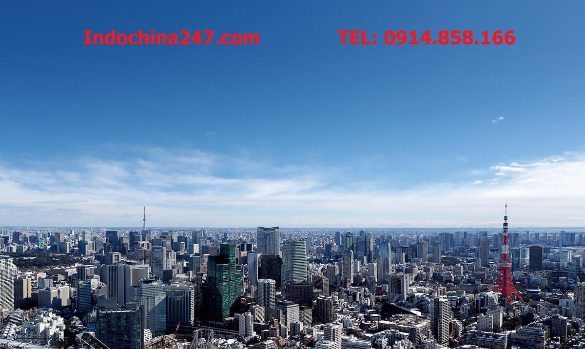 Vận chuyển đường biển giá rẻ từ Hải Phòng đi Tokyo, Nhật Bản