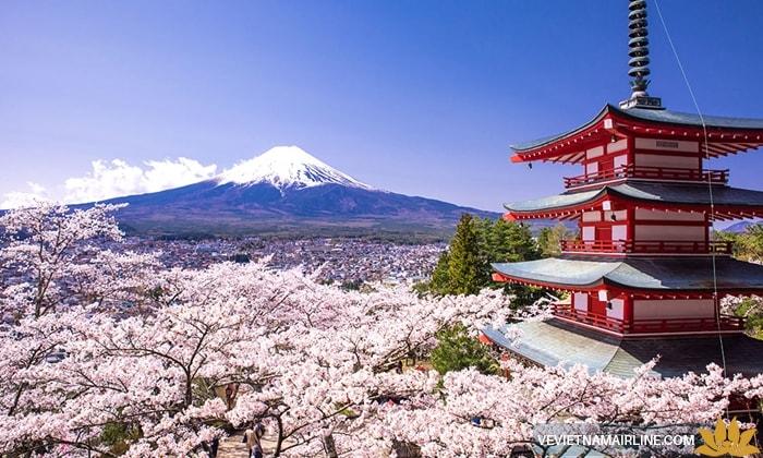 Vận chuyển hàng hóa bằng đường hàng không từ Nhật Bản về An Giang