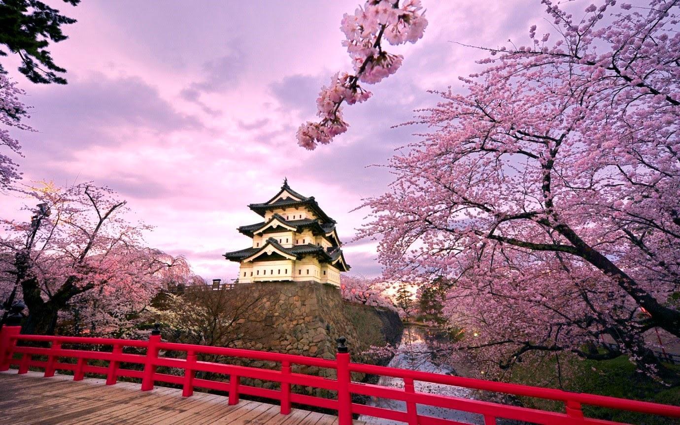 Vận chuyển hàng hóa bằng đường hàng không từ Nhật Bản về Bà Rịa - Vũng Tàu giá rẻ