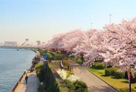 Vận chuyển hàng hóa từ Nhật Bản về Bắc Ninh