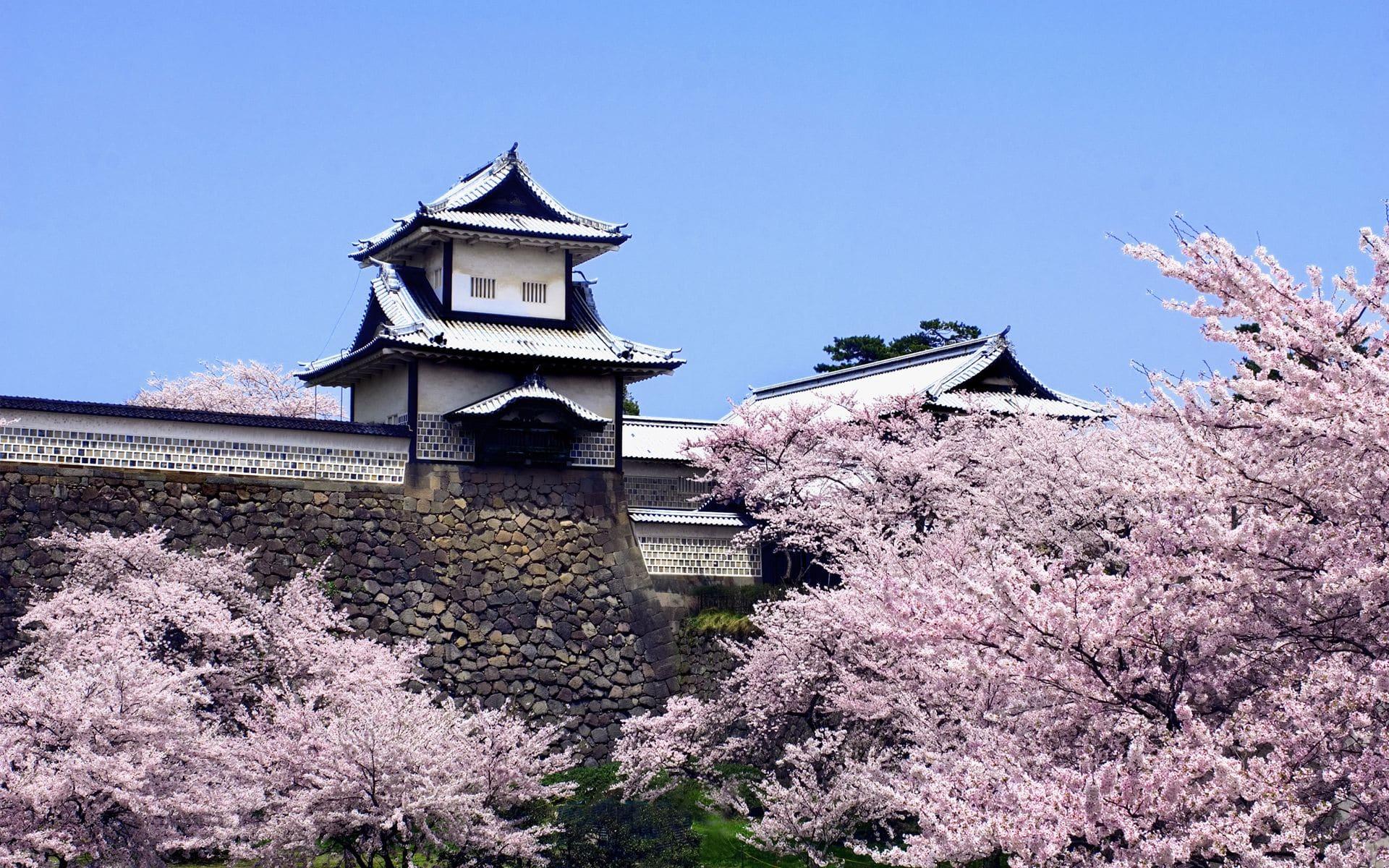 Vận chuyển hàng hóa từ Nhật Bản về Cao Bằng