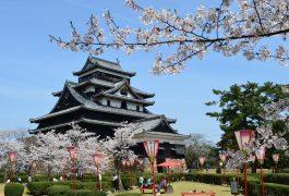 vận chuyển hàng hóa từ Nhật Bản về Khánh Hòa