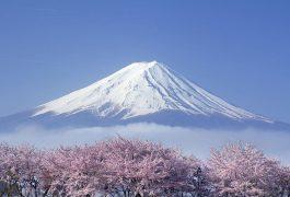 Vận chuyển hàng hóa từ Nhật Bản về Bắc Kạn giá rẻ cực sốc