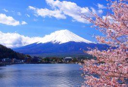 Vận chuyển hàng hóa từ Nhật Bản về Bến Tre