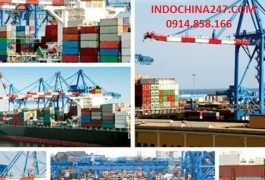 Dịch vụ order alibaba, tao bao và 1688 vận chuyển về Việt Nam trọn gói