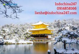 Order hàng Nhật, mua hộ hàng Nhật và vận chuyển về Ninh Thuận giá rẻ