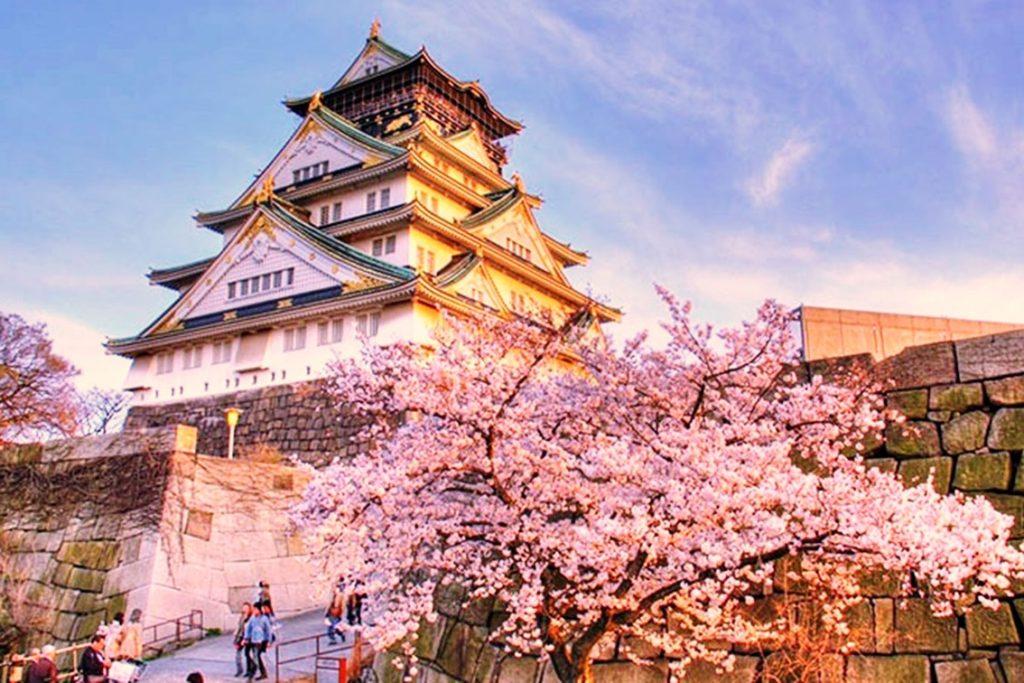 Dịch vụ vận chuyển hàng không từ Nhật Bản về Phú Yên giá rẻ, an toàn