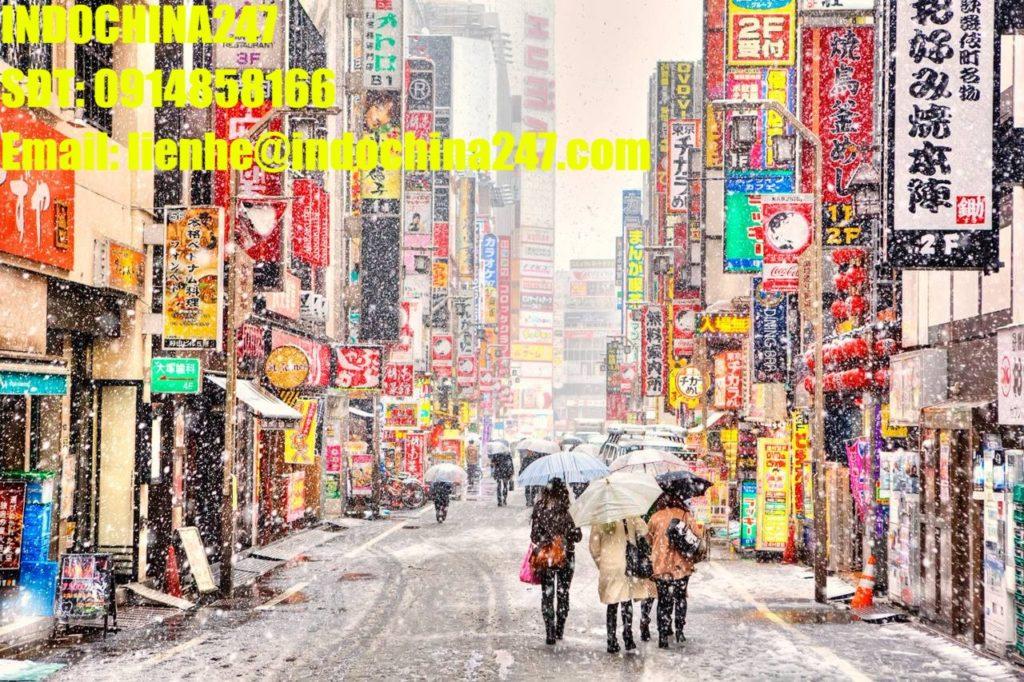 Dịch vụ chuyển hàng xách tay Nhật Bản về Quảng Ninh giá rẻ, an toàn