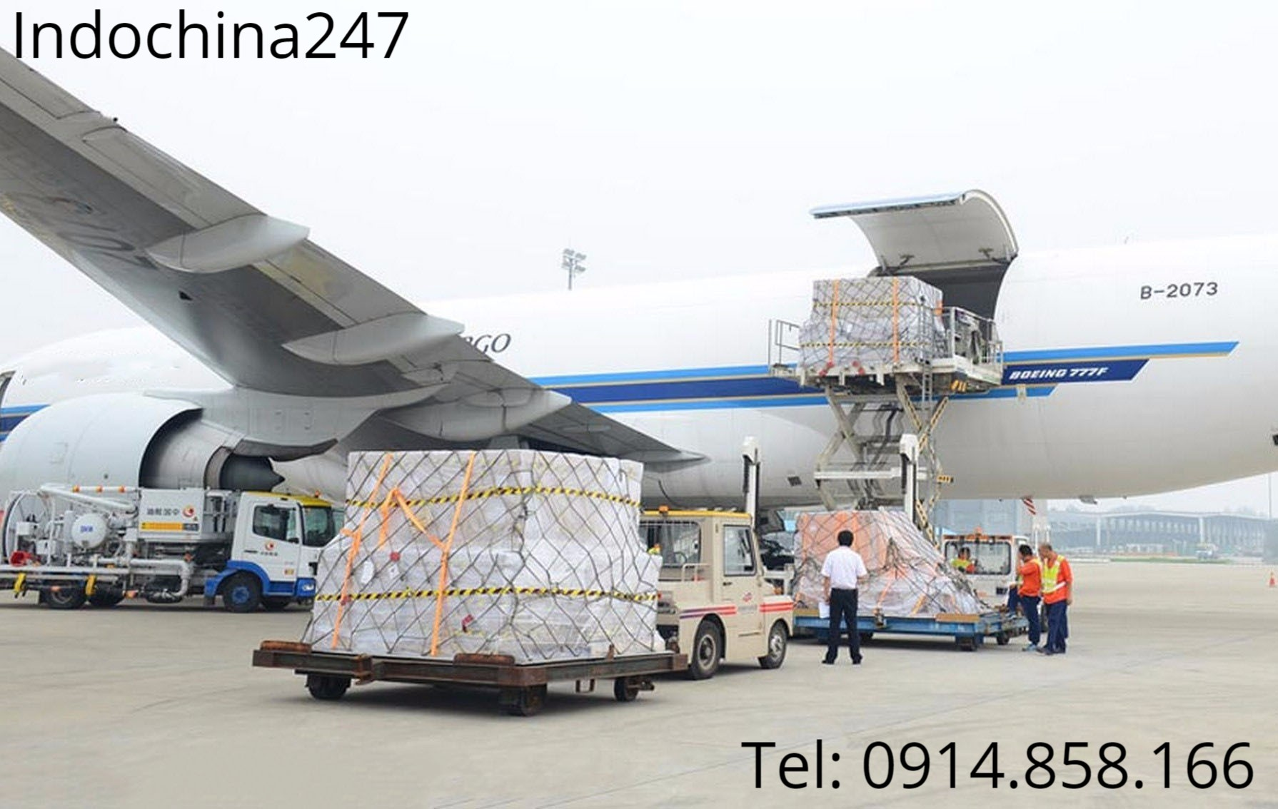 Dịch vụ vận chuyển hàng hóa giá rẻ từ Thụy Sỹ về Việt Nam