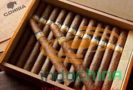Vận chuyển xì gà từ Nga về Việt Nam giá rẻ