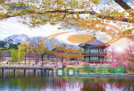 Vận chuyển thiết bị móc móc điện tử từ Hàn về Việt Nam