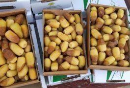 Làm cách nào để chuyển phát nhanh hàng thực phẩm đi Hong Kong trọn gói giá rẻ