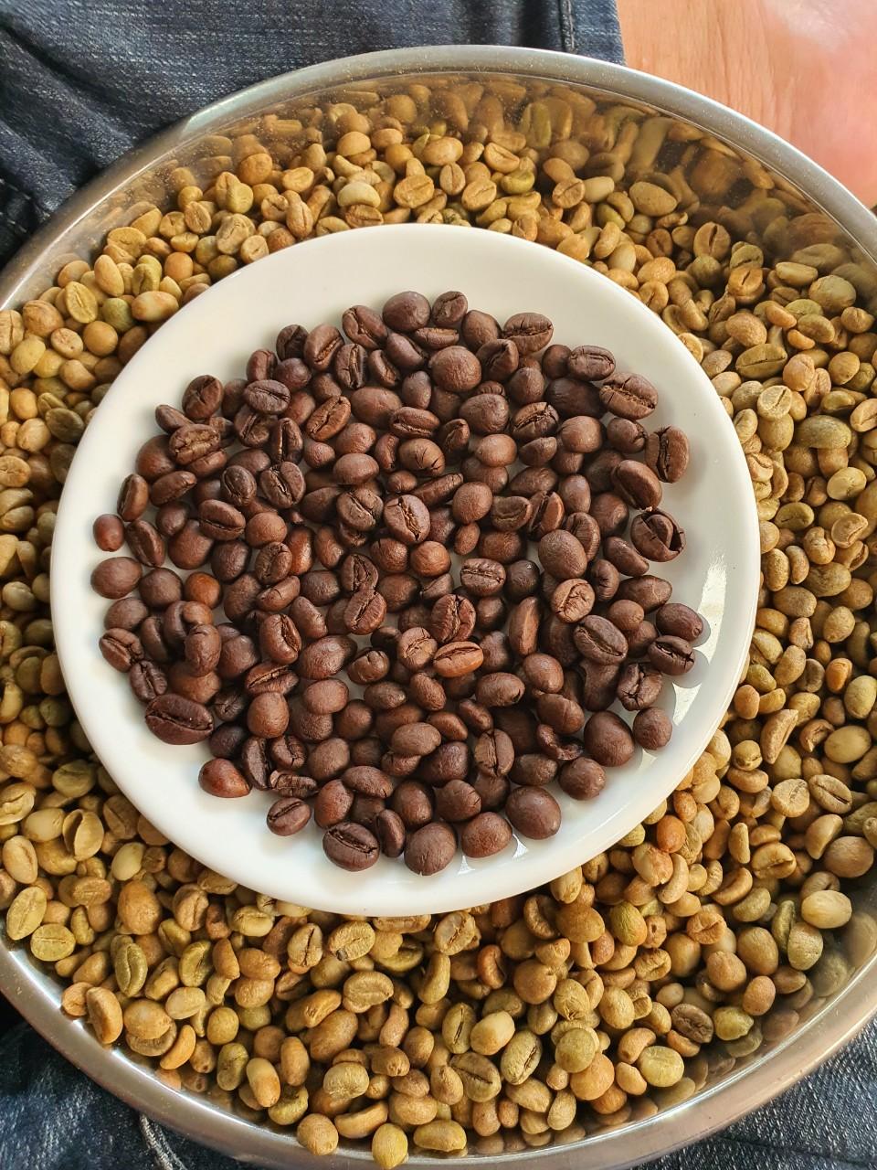 High-quality Robusta & Arabica Coffee - Vietnam with competitive price