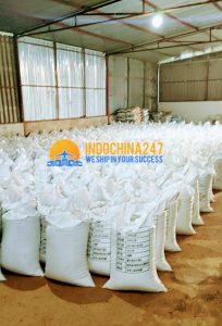 Tư vấn nhập khẩu đường biển hàng mẫu số lượng lớn từ Malaysia